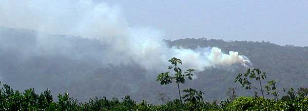 Forest Fire in the foothills of the Maya Mountains, Stann Creek District, between Cockscomb and Mayflower. 9 May 2003